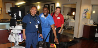 Methodist Mansfield Hosts Pet Therapy Workshop