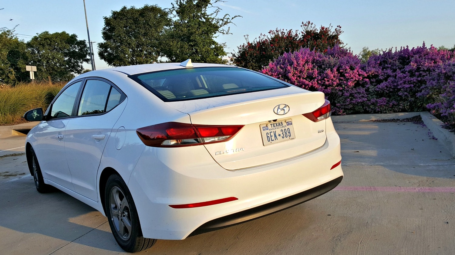 2017 Hyundai Elantra Rear View