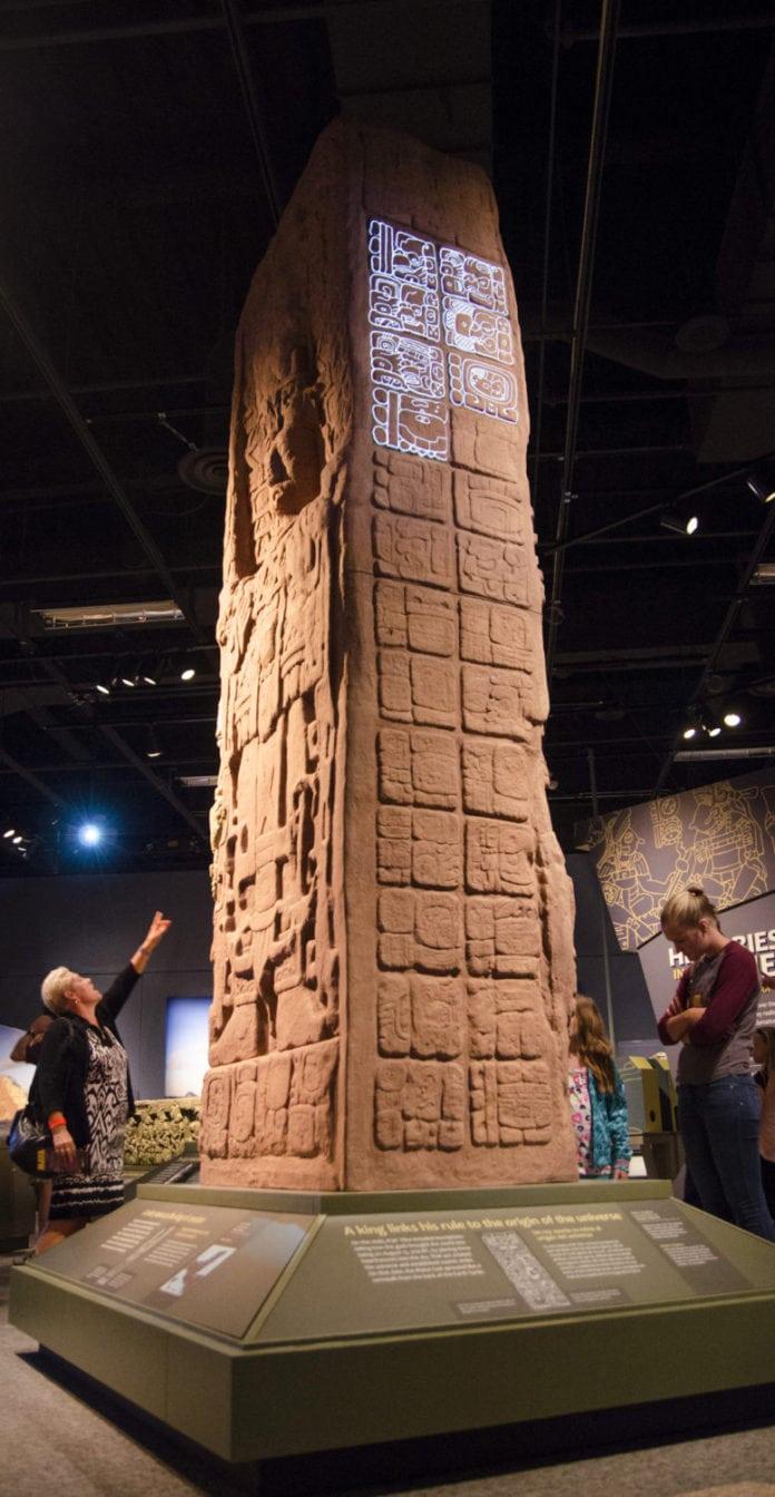 Maya Hidden Worlds Revealed
