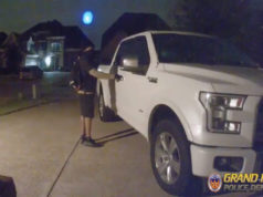 mansfield car burglar