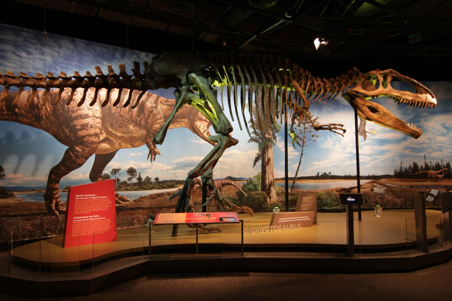 ultimate dinosaurs Perot Museum Of Nature And