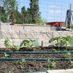 grand prairie community garden