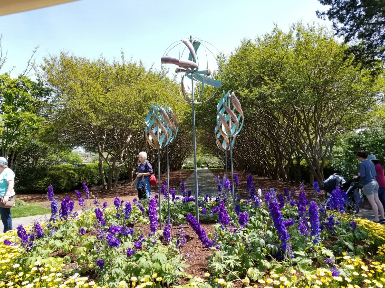Dallas Arboretum Summer activities