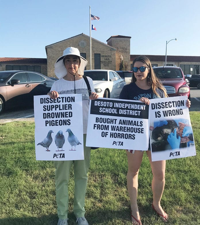 PETA protests animal dissection