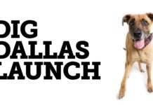 Dig Dallas Launch