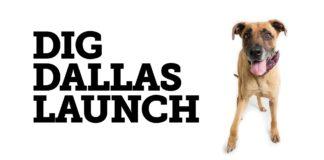 Dig Dallas Launch