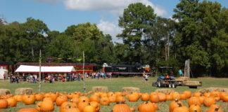Texas State Railroad Pumpkin Patch
