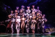 CATS Returns to Dallas Summer MusicalsFair Park