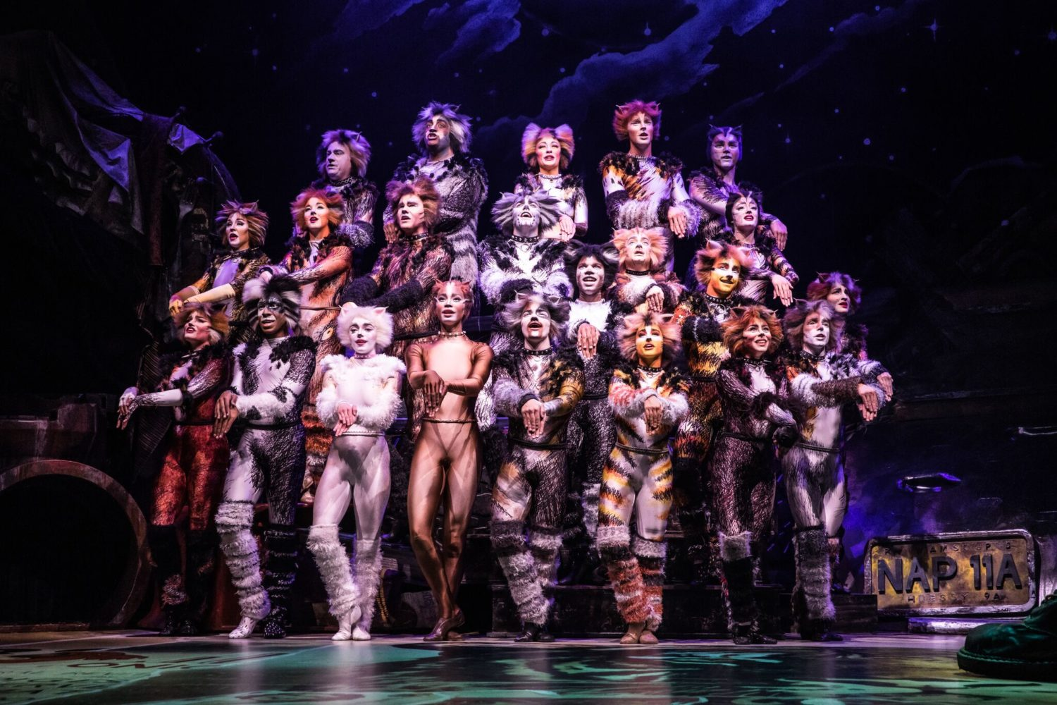 Image result for Cats broadway Dallas