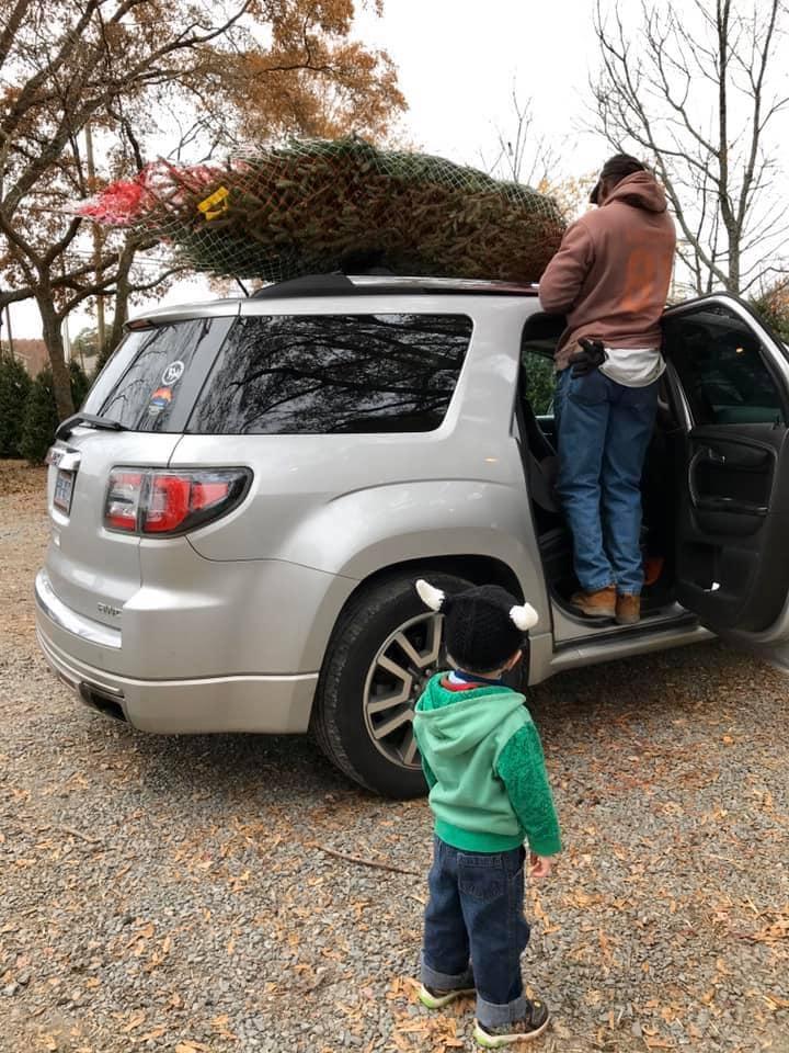 Christmas Tree on Rack
