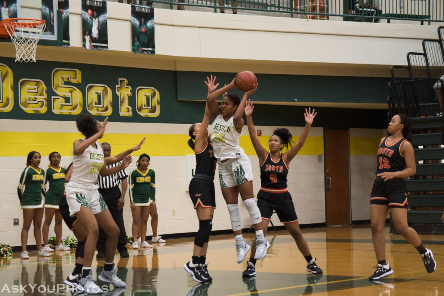 DeSoto Lady Eagles