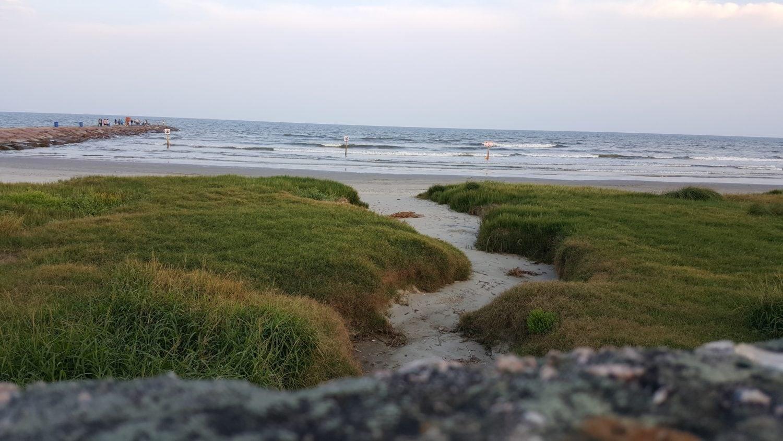galveston beach path