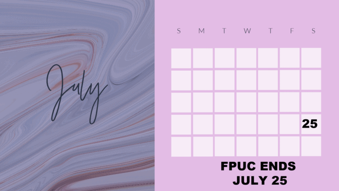 JUly 2020 calendar graphic