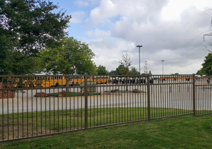 school buses in parking lot