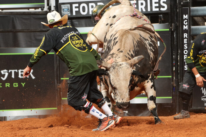 Rodeo clown and charging bull