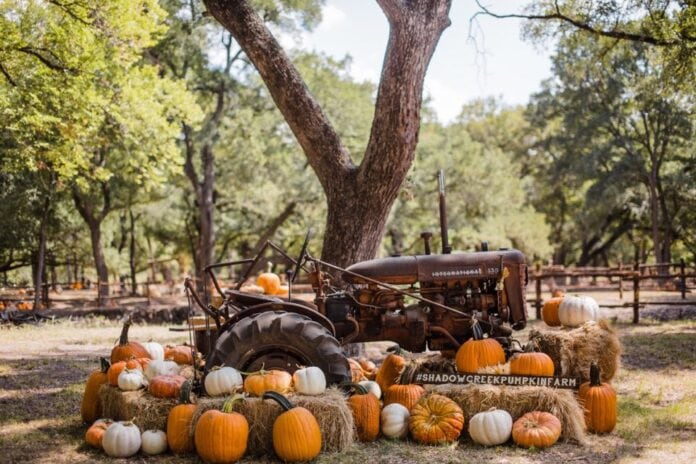 Shadow Creek Pumpkin Farm