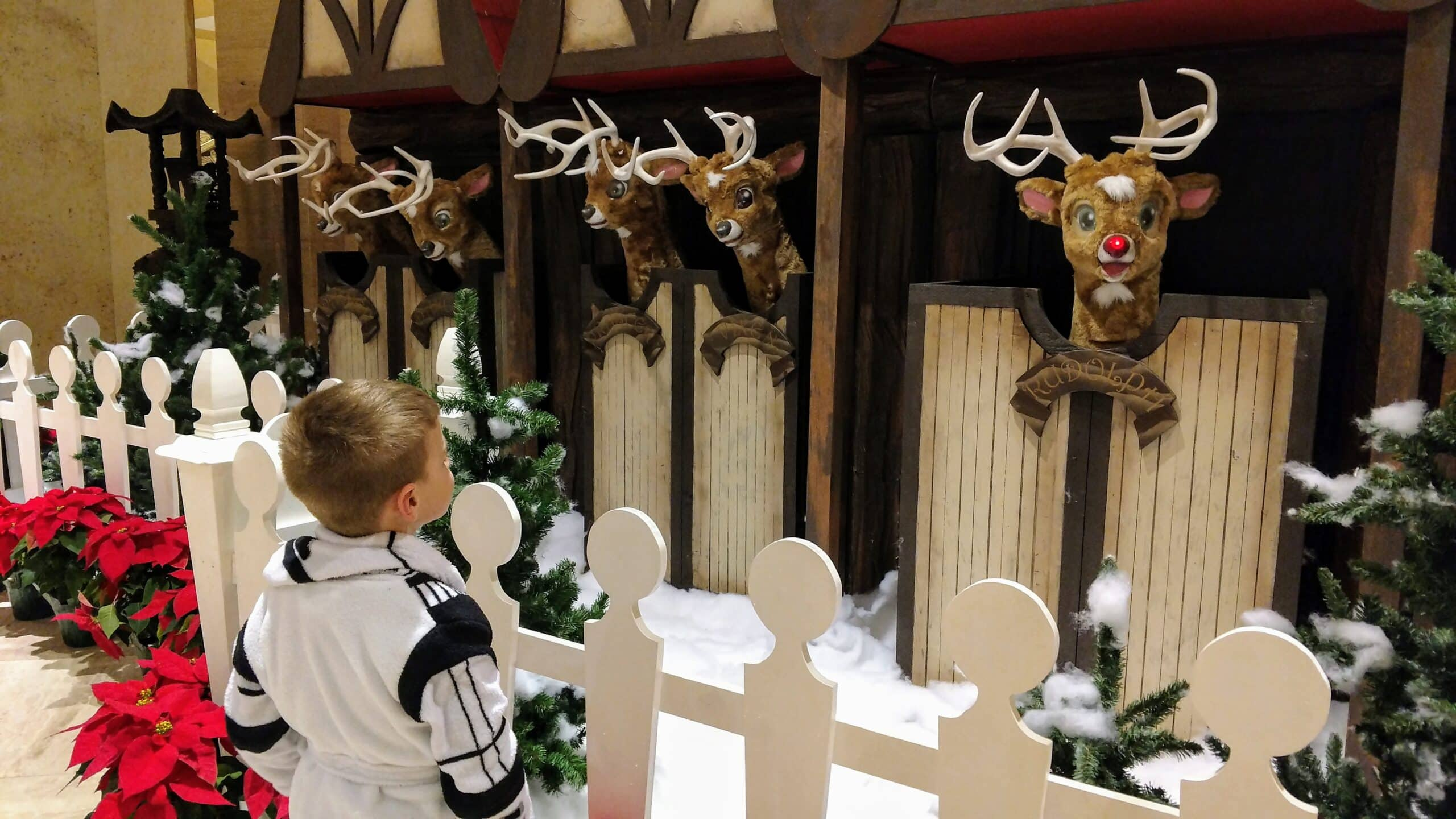boy with mechanical reindeer