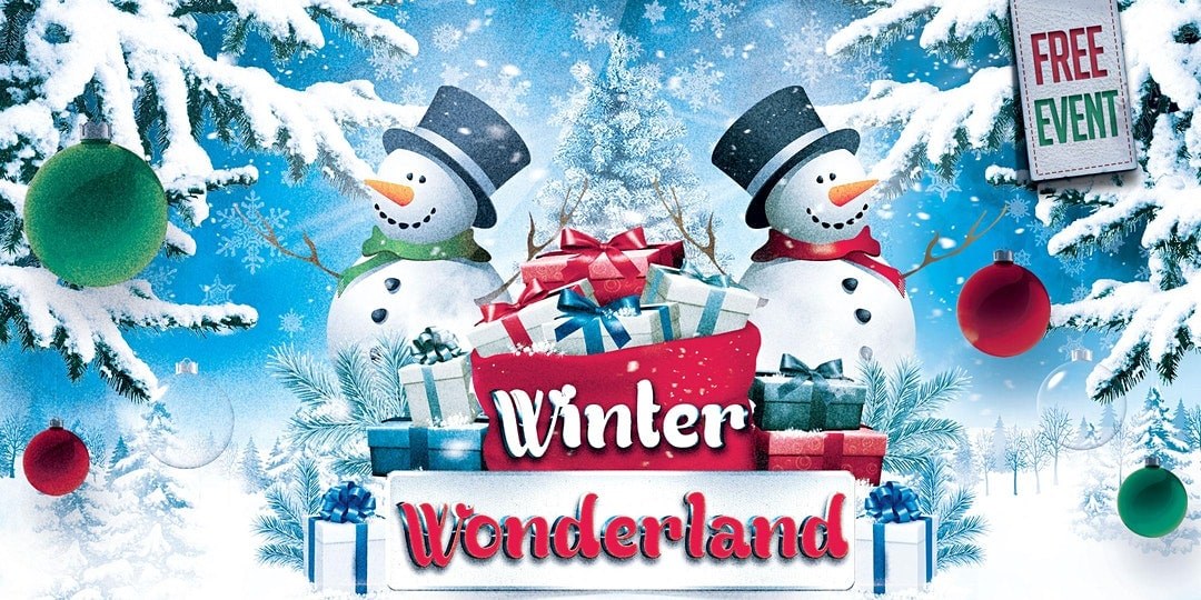DeSoto Winter Wonderland Poster