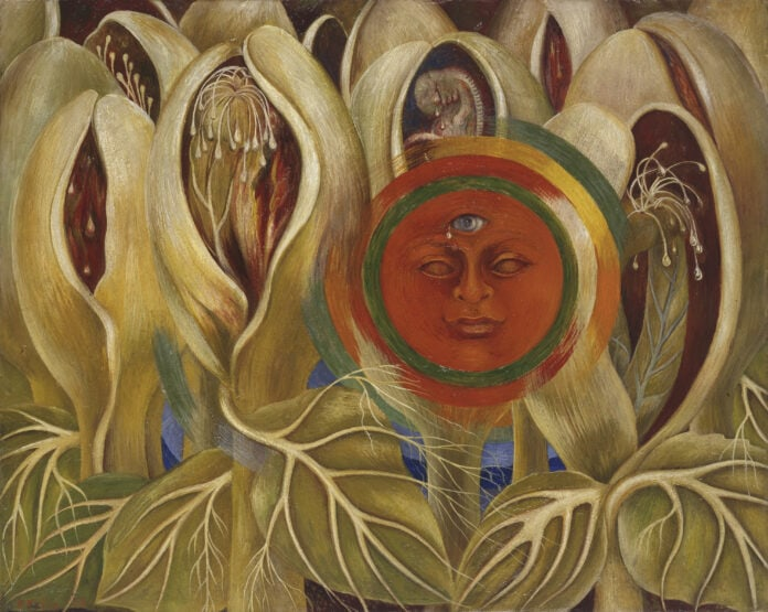 Frida Kahlo: Five Works at Dallas Museum of Art