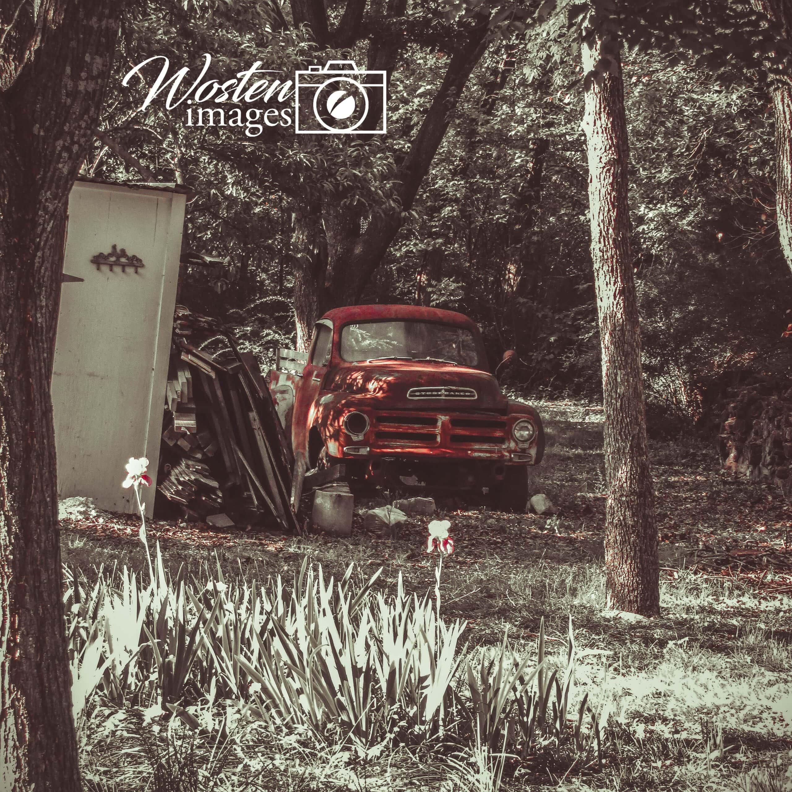 vintage truck in woods