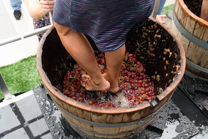 feet stomping grapes in barrel