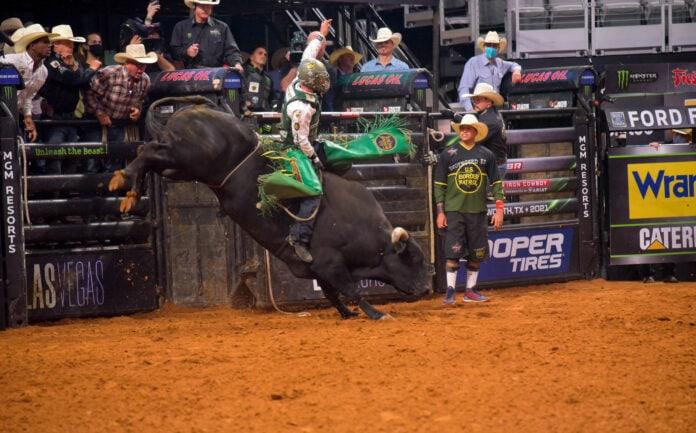 Davis rising a bull