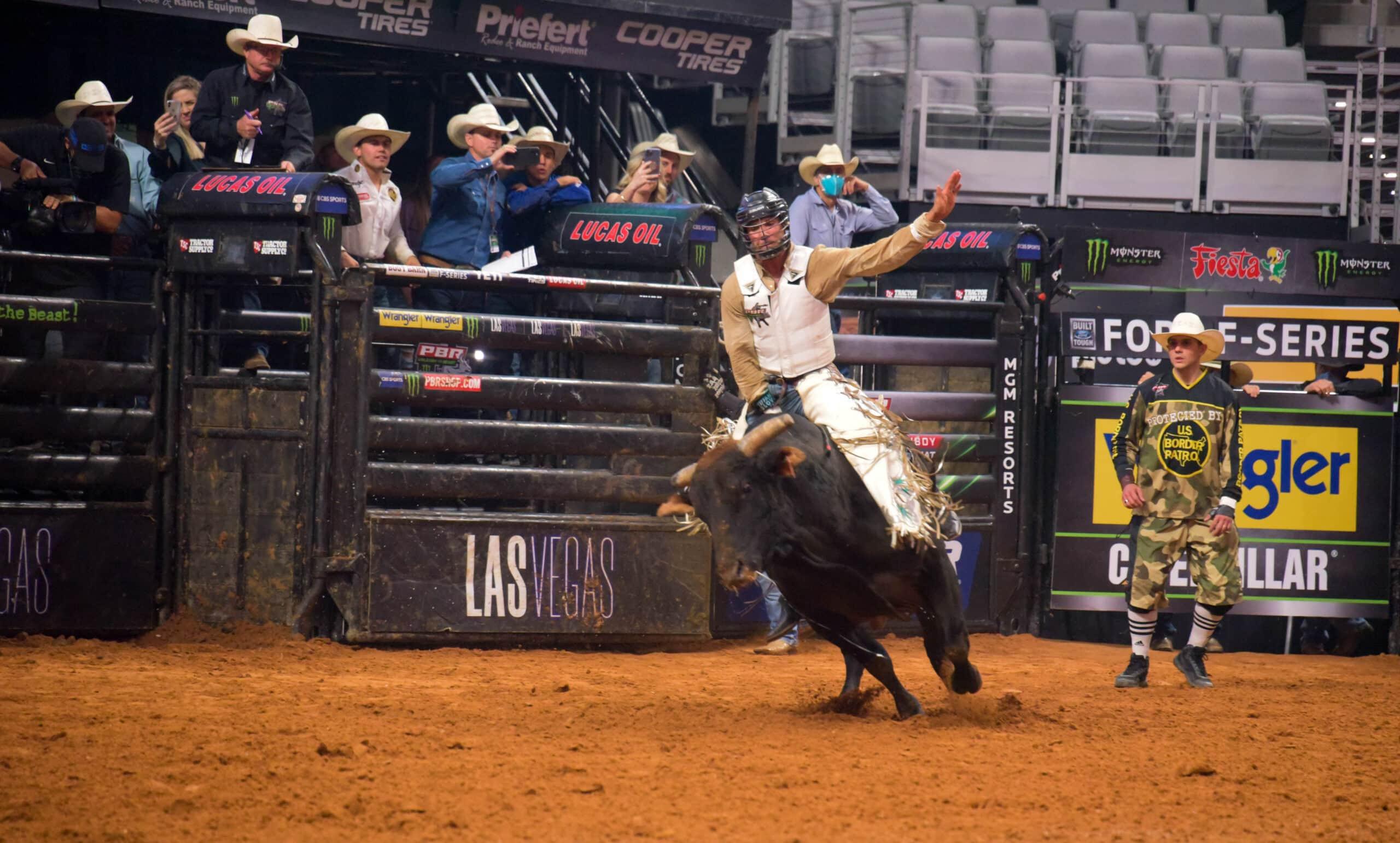 Vastbinder riding a black bull
