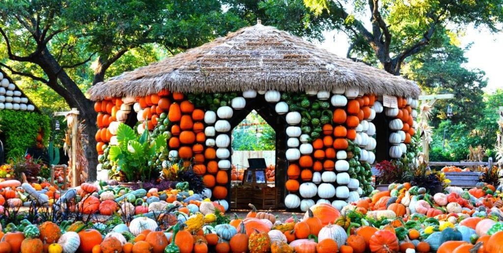 pumpkin covered gazebo