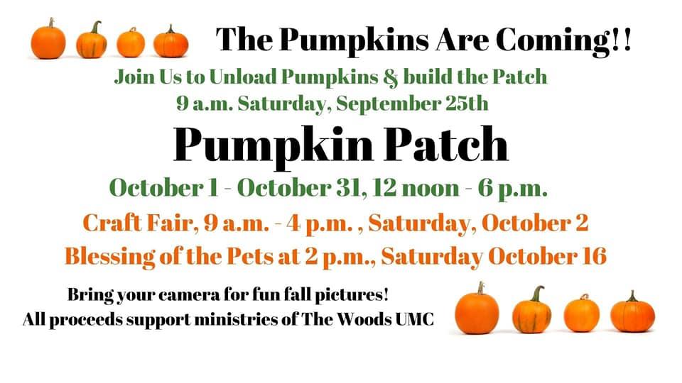 Woods United Pumpkin flyer